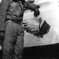 Sergent  Harold B. WILLIS (USA)