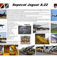 Jaguar A22